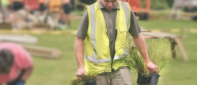 Omarumutu Papakainga Restoration Planting Day