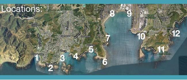 Wellington South Coast Cleanup 2016