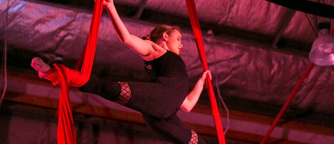 Introduction to Tissu & Trapeze