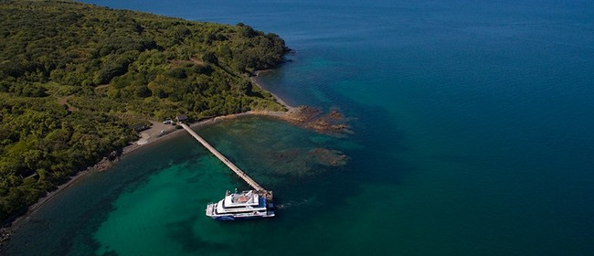 25% Off to Rangitoto, Tiritiri Matangi and Rotoroa Islands