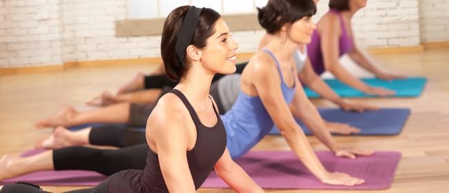 Stott Pilates - Intensive Matwork Instructor Course