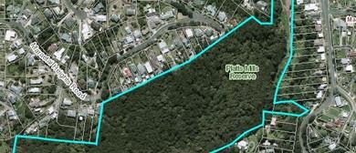 Free Ranger Guided Walk - Platts Mills Reserve