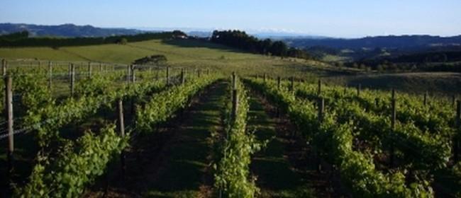 NZ vs Italy - Wines of Vin Alto