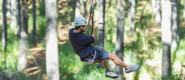 25% Off Tree Adventures