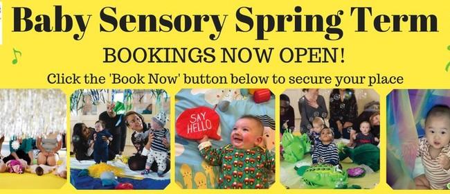 Baby Sensory Palmerston North Spring Term 2016