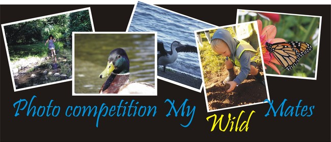 Photo Competition: My Wild Mates
