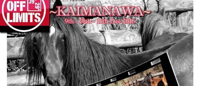 Kaimanawa Classic 2 Or 3 Day Guided Horse Trek