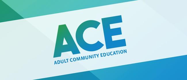 ACE Workshops
