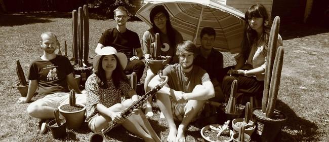 Auckland Jazz Festival - Skogkatt