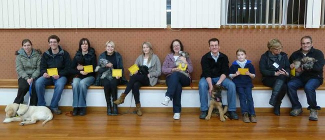 Family Friendly Dog Training - Indoors