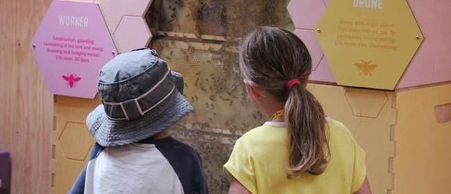 Bee Awareness Month
