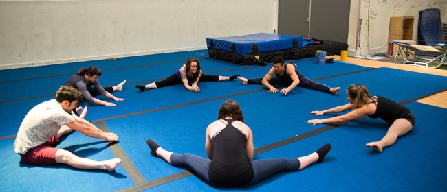 Flexibility and Conditioning 2-Week Course