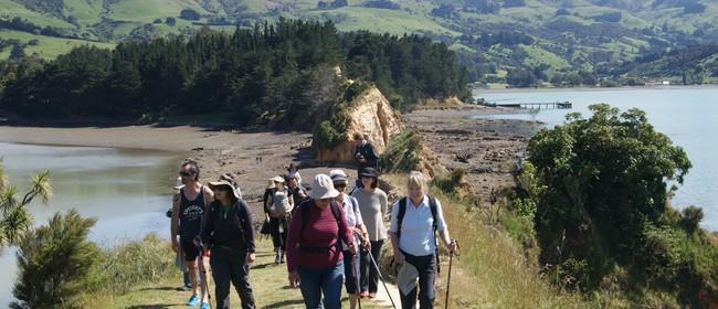 Ōnawe Pā - 2 Hour Walk