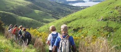 Orton Bradley Park to  Mt Herbert / Te Ahu Pātiki - 6.5 Hour
