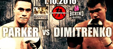 Parker vs Dimitrenko Live Boxing 12 rounds - Heavyweight