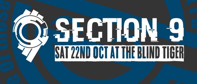 Section 9 - Dubstep/ DnB / Techno