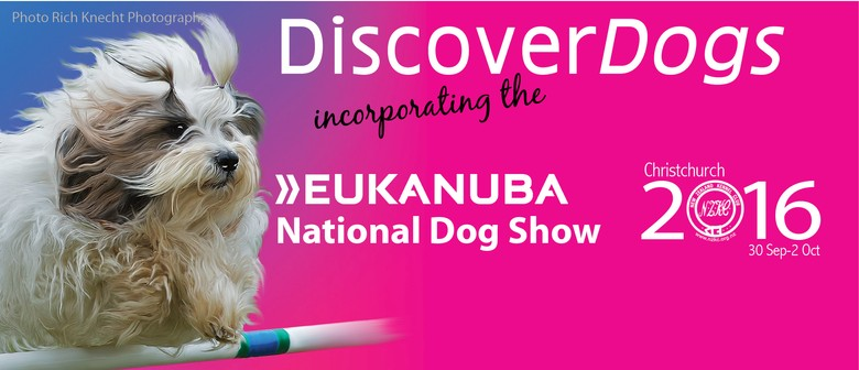 Discover Dogs 2016
