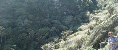 Nikau Palm Gully/Marine Reserve - All Day Trip
