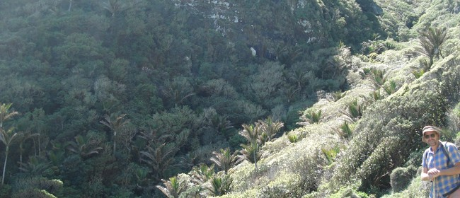 Nikau Palm Gully/Marine Reserve - All Day Trip