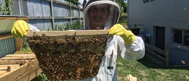Bees in the Burbs - Urban Beekeeping