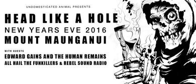 Head Like A Hole — New Years Eve 2016
