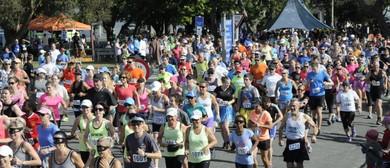 Martinborough Round the Vines Fun Walk-Run