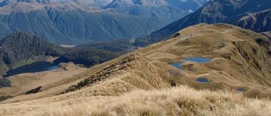 Discover the Alpine World