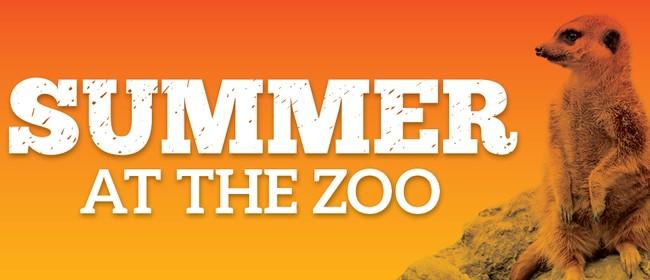 Summer At the Zoo