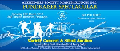 Variety Concert & Silent Auction