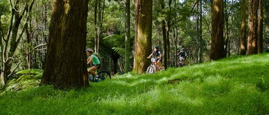 The Whakatane Mountain Bike Club