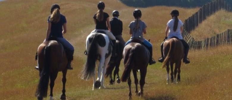 Horse Riding Fun Days