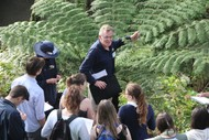 Guided Walk: Beetles, Beaks and Branches