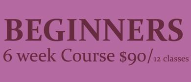 6 Week Beginners Course