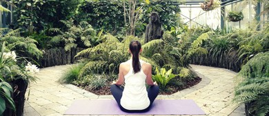Yoga In the Conservatory Pop Up