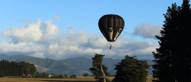 Wairarapa Balloon Festival - Park to Paddock