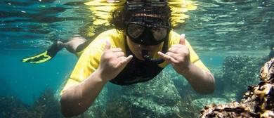 Goat Island Snorkel Day