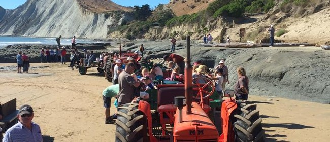 Seaweek - Cape Kidnappers Beach Clean Up