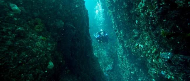 Seaweek - Kapiti Marine Reserve Display