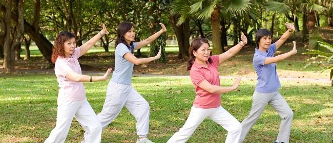 Tai Chi Beginners Fridays