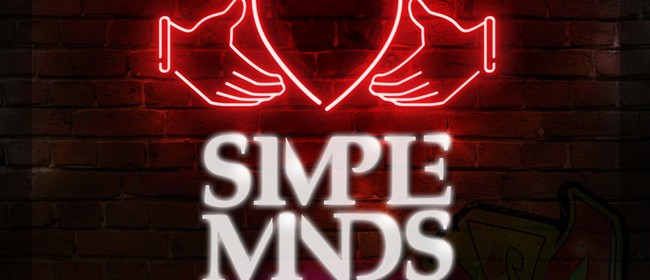 Simple Minds & B52's After Party