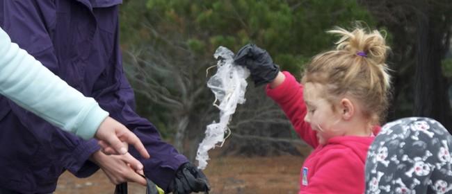 Massive Marlborough Clean Up: Picton Foreshore