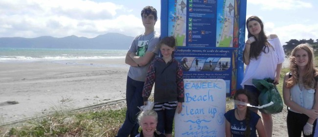 Seaweek - Raumati Beach and Stream Clean Up