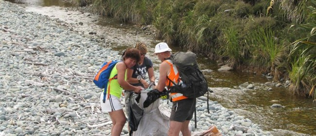 Massive Marlborough Clean Up: Taylor River