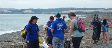 Beach Clean Up - Walk and Talk