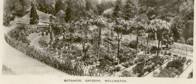 Guided Walk: Our Heritage Garden