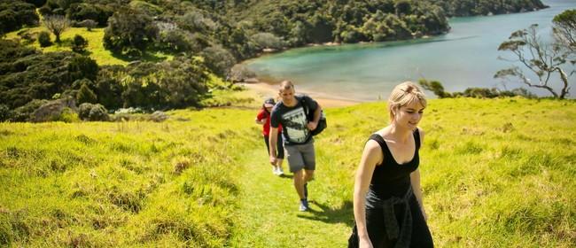 Whangamumu Whaling Walk - Walk 8