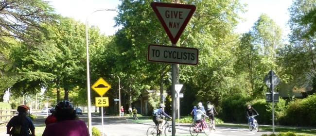 Slow Confidence Ride For Adult Cyclists