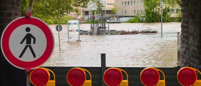 Global Experiences On Managing Disaster Risk - Rethinking NZ