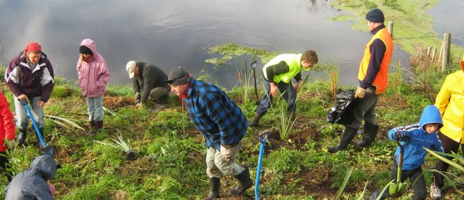 Waitangi Estuary Wetlands Community Planting Day