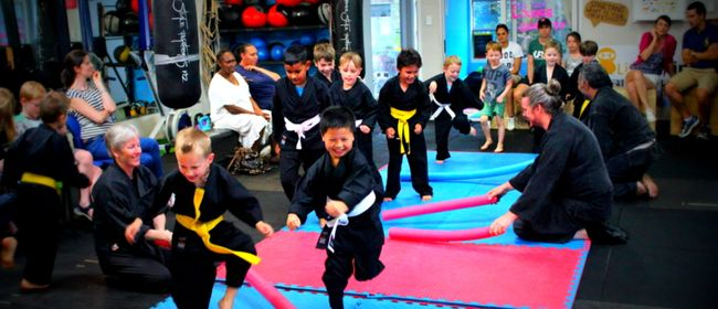 Little Ninjas Kids Classes